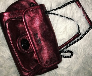 bag, blood, and fancy image