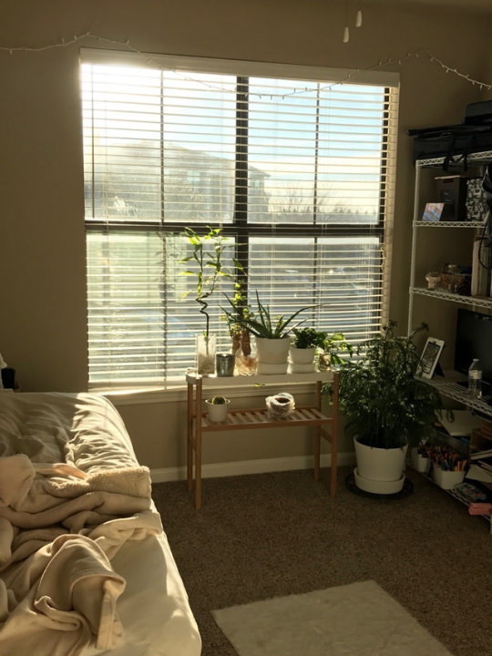 aesthetic, bedroom, and pale image