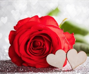 hearts, red rose, and love image