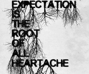 expectation, heartache, and root image