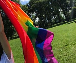 flag, rainbow flag, and lgbt image