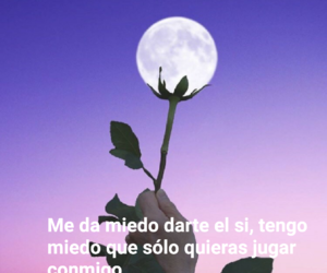 amor, flores, and frases image