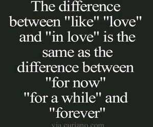 like, quotes, and love image