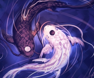 fish, yin yang, and avatar image