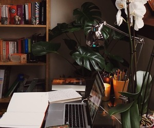 books, flower, and desk image