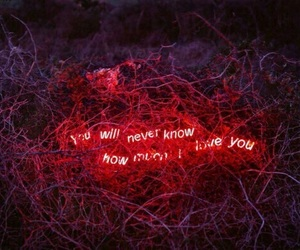 red, love, and neon image