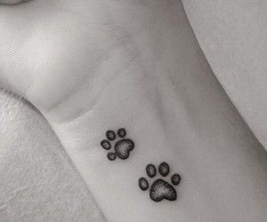 black & white, tattoo, and cats image
