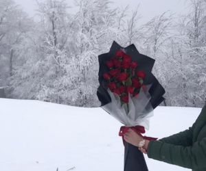 bouquet, cold, and flowers image
