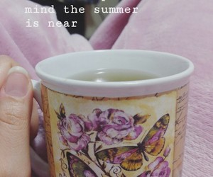 butterflies, cold, and cup of tea image