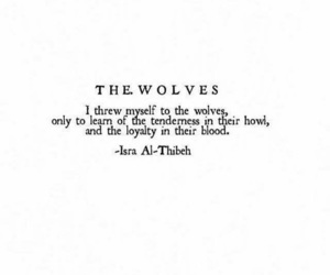 wolf, quotes, and words image