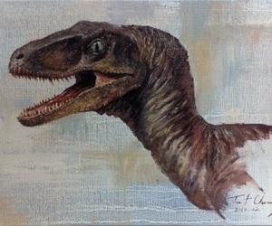 dinosaur, raptor, and velicoraptor image