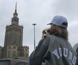 aesthetic, city, and dog image