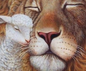 lamb and lion image