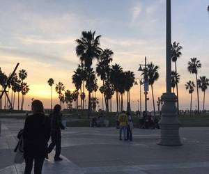 california, Dream, and palm trees image