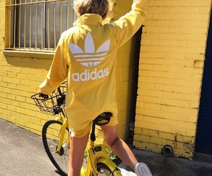 adidas, adidas originals, and bike image