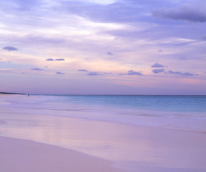 beach, ocean, and pink image