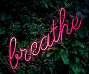 breathe, neon, and pink image