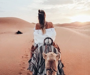 camel, sand, and desert image
