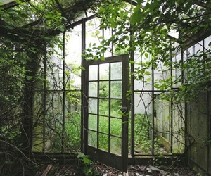 green, greenhouse, and inspiration image