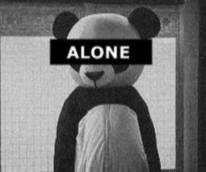 alone and panda image