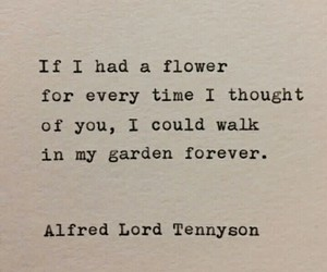 love, quotes, and flowers image