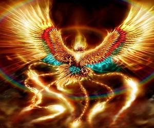 bird, phoenix, and bird of fire image