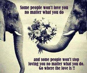 elephant, people, and text image