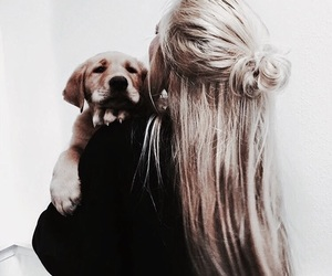 dog, hair, and girl image