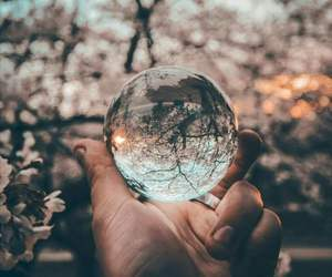 ball, beautiful, and nature image