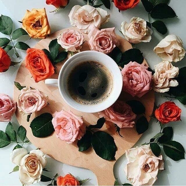coffee, flower, and morning image