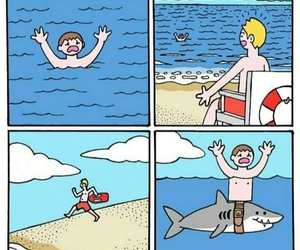 comics, wins, and funny pictures image