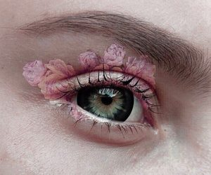 rose, eye, and pink image