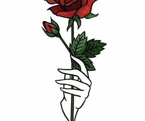 rose, red, and wallpaper image