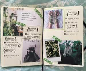 creative, decoration, and ideas image