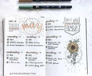 may, notebook, and planner image