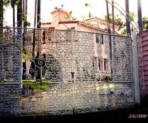 jayne mansfield and pink palace image