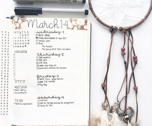 daily, log, and march image