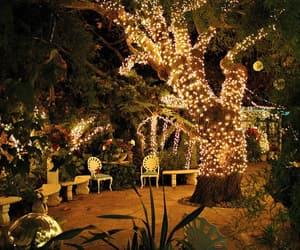 arboles, beautiful, and lights image