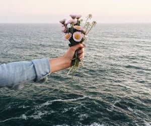 flower, pretty, and sea image
