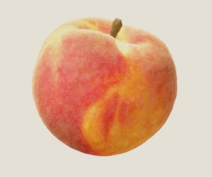 call me by your name, movie, and peach image