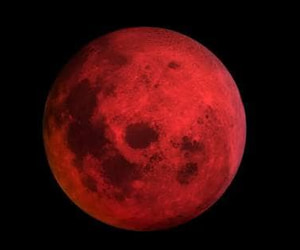 article, muslims, and lunar eclipse image