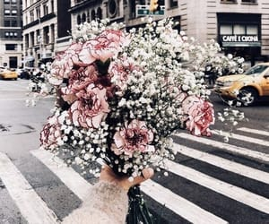 flowers, new york, and city image