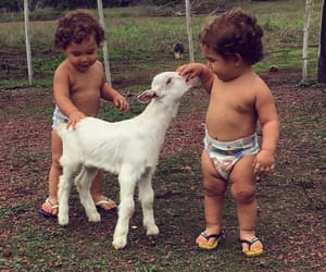 animals, babies, and cuteness image