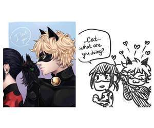Chat Noir, love, and heart image