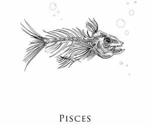 pisces, fish, and zodiac image