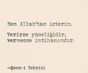 alıntı, türkçe sözler, and Şems i tebrizi image