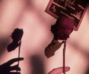 goals, rose, and tinabrinley image