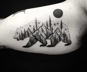 bear, ink, and inked image