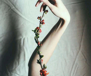 flowers, hand, and pale image