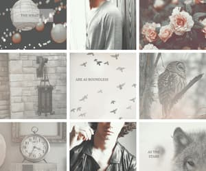 aesthetic, otp, and sirius black image